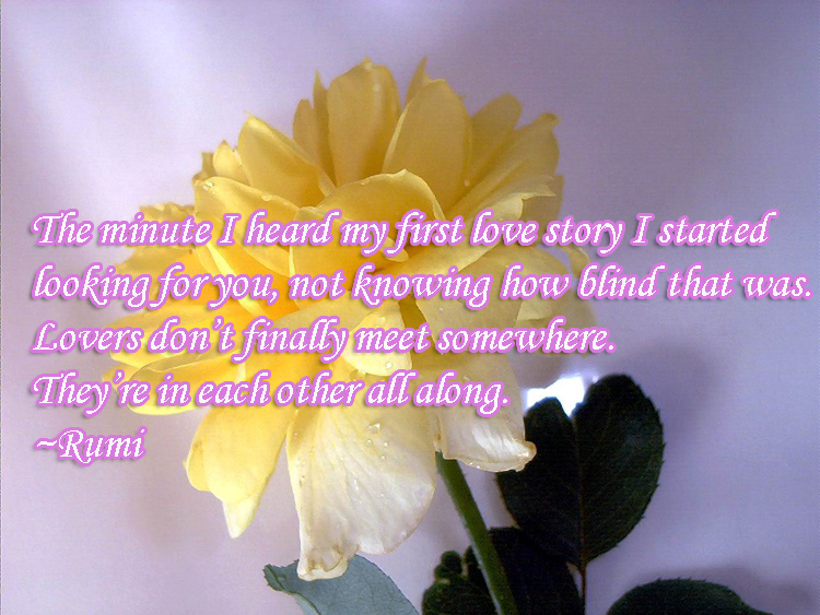 Divine Love Quotes Interesting 55 Quotes About Divine Love